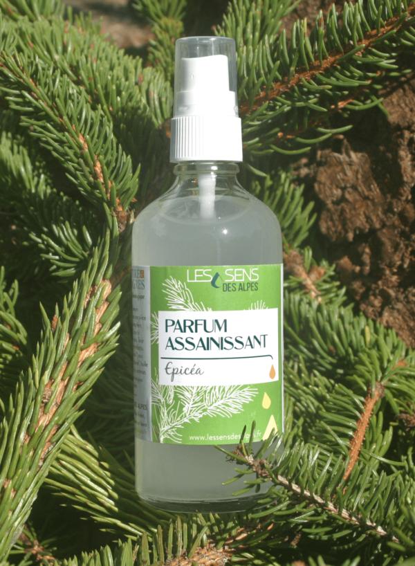 Parfum Assainissant Huile Essentielle Epicea dans des branches d'épicéa