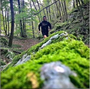 Trailrunning dans la foret